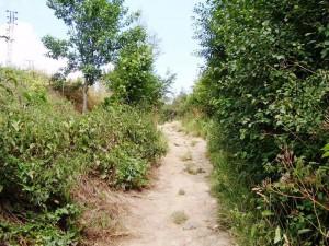 een pad omhoog