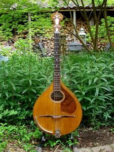 houten banjo