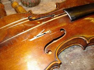 vakterm: 'luxaflex' viool