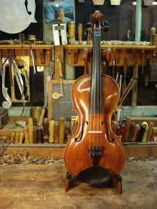 de viool kan naar de cliënt