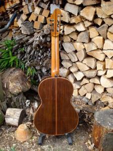7-snarige gitaar achterkant