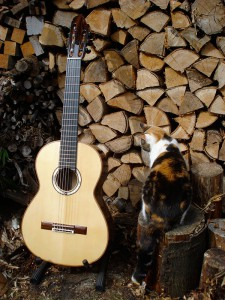 7-snarige gitaar vooraanzicht
