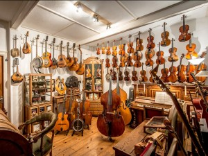 in de winkel van Hans de Louter zijn veel snaar-, strijk- en/of tokkelinstrumenten aanwezig
