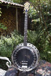 de banjo is klaar en vindt een plaats in mijn tuin